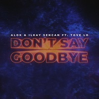 DON'T SAY GOODBYE (2020)